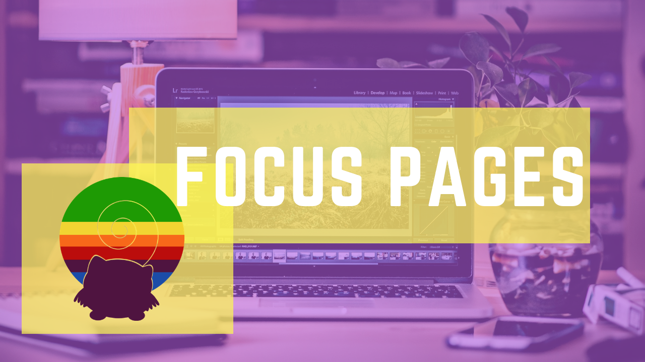focus pages squirrly seo 2019